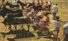 Fêtes villageoises, festivals